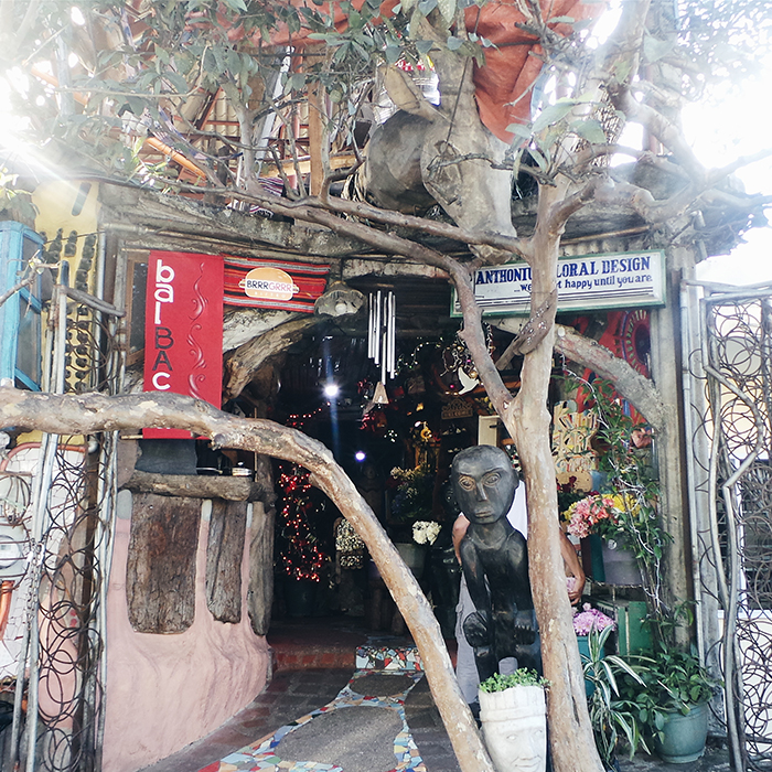 Photo by Booky