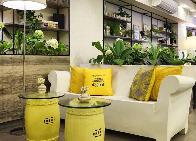 yellow chairs, sofa