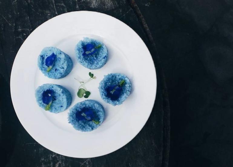 rainforest kichene flower dishes