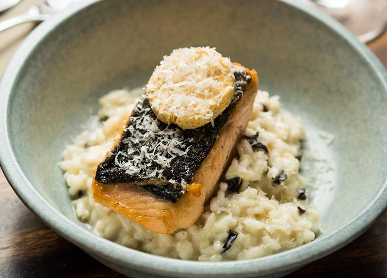 Salmon on Risotto from Refinery