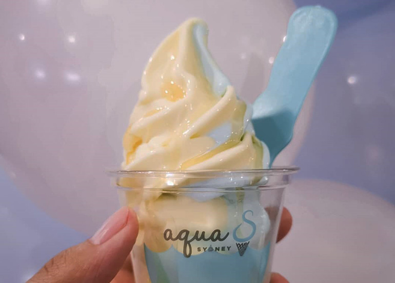 Taho and Honey Calamansi Soft Serve Ice Cream from Aqua S
