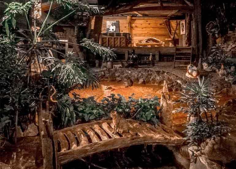 Oh My Gulay Interiors