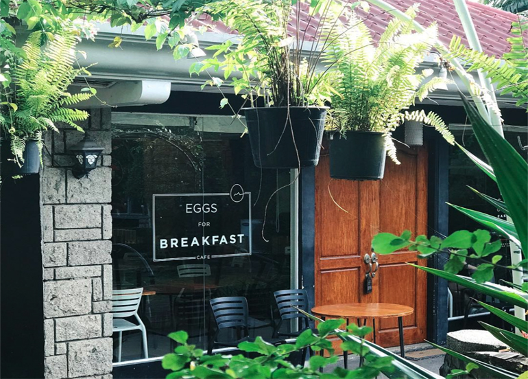 Eggs for Breakfast Exterior with hanging plants and potted plants