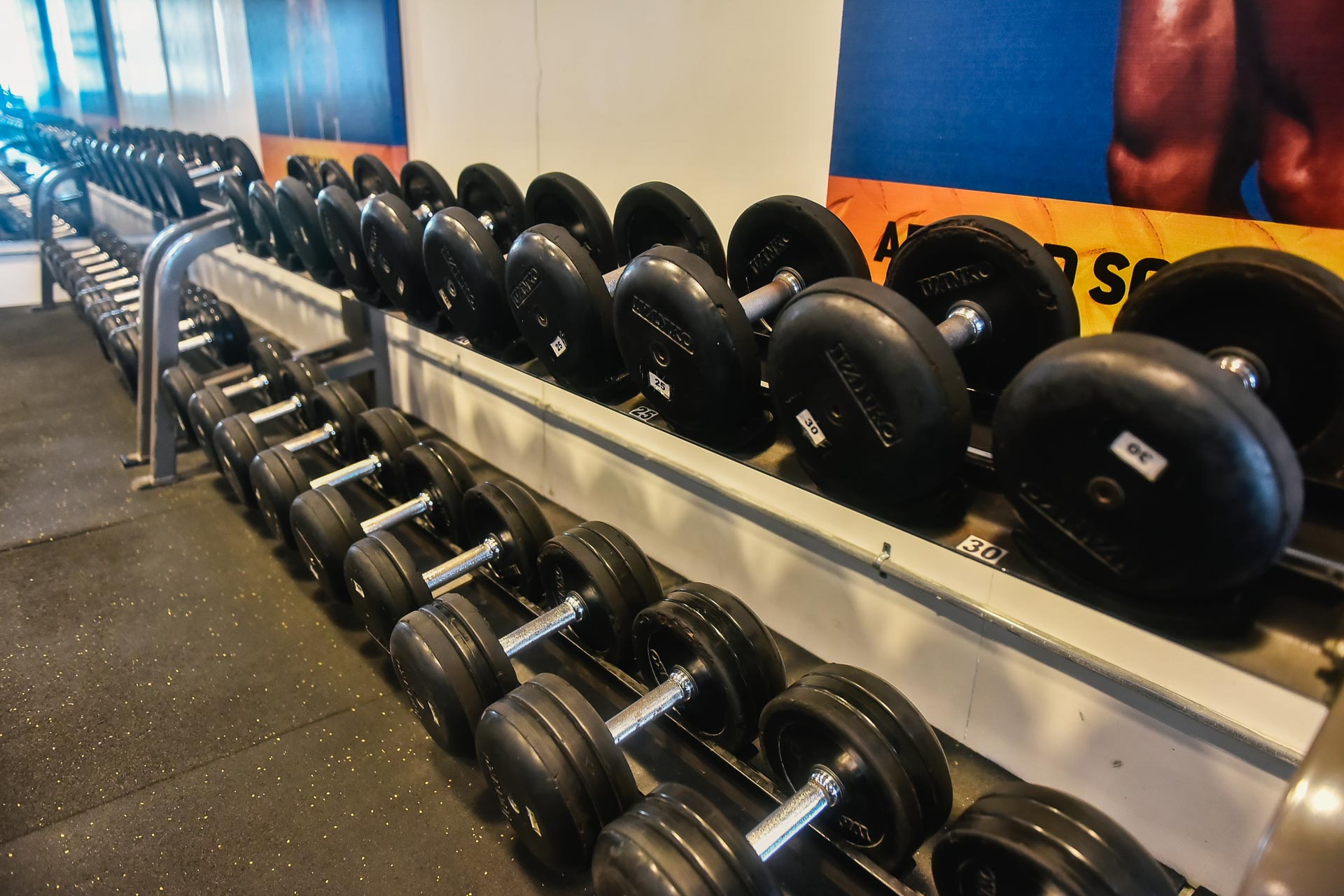 Fitness Stores That Can Deliver Gym Equipment To Your Home